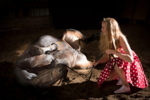 claire_moris_portraits_chevaux-33